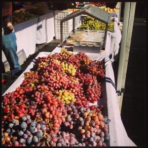 Farmer's Market 2013 015